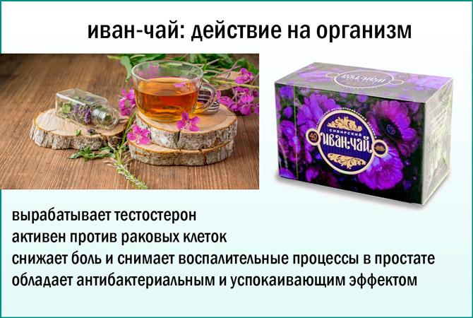 Трава иван чай лечит простатит простатит причины симптомы лечение