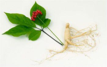 Как повысить эректильную функцию - рецепты народной медицины и фитотерапия