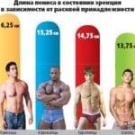 статистика размера