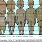 Физиологические особенности развития мальчиков
