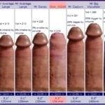 размеры пениса