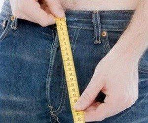 Как измерить правильно член