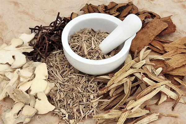 Лечение простатита корой осины в домашних условиях